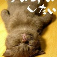 金曜日♪ 中洲 ラウンジ AIR エアー